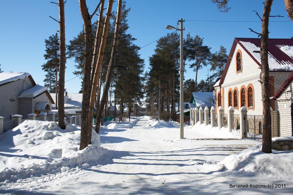 Ул. Сосновая 2011г., Жирновск