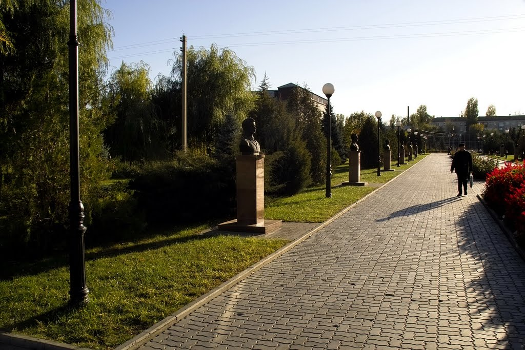 Камышин, Камышин