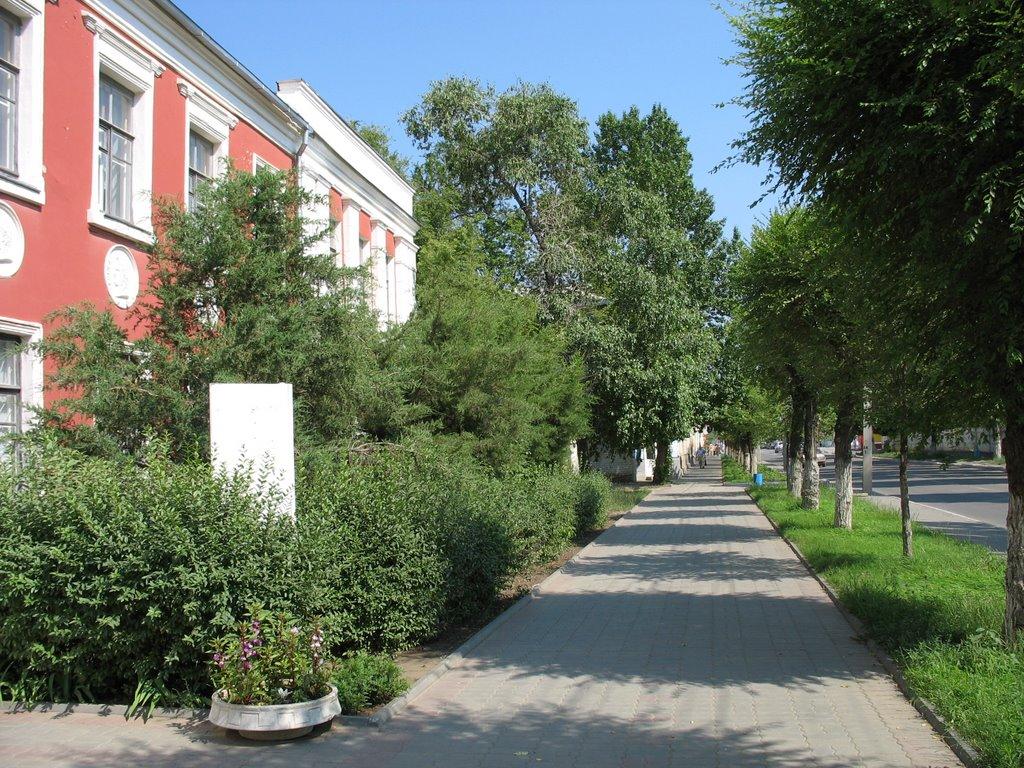 ул. Октябрьская и Камышинское музыкальное училище, Камышин
