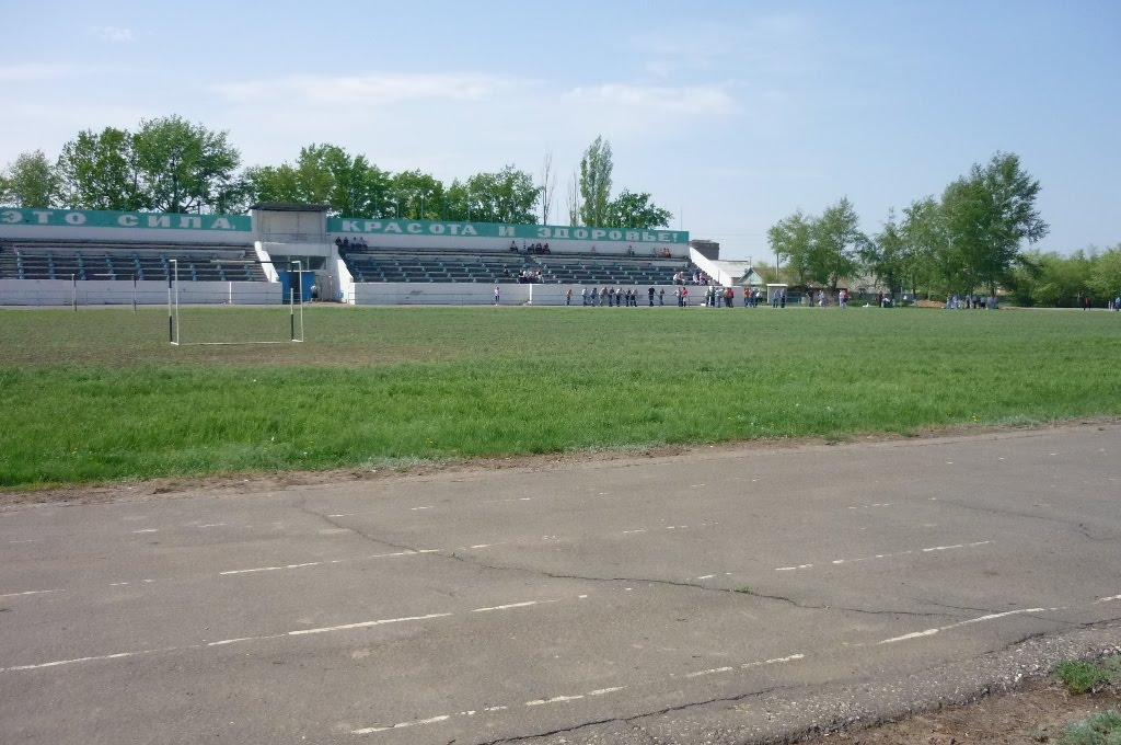 "Стадион ""Колос"", Палласовка"