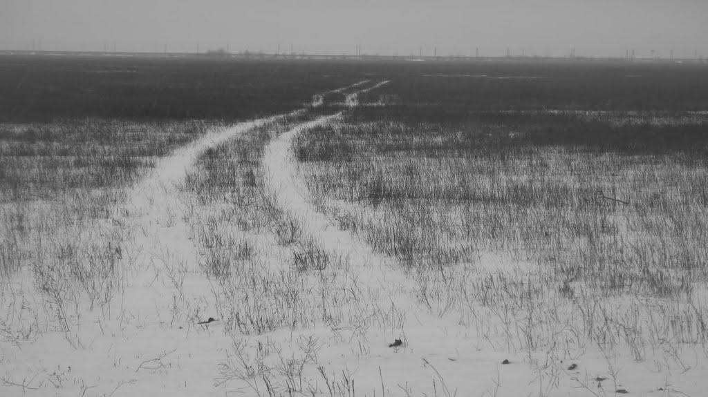 Поле... Лётное поле... (Field... Ex-airfield), Средняя Ахтуба