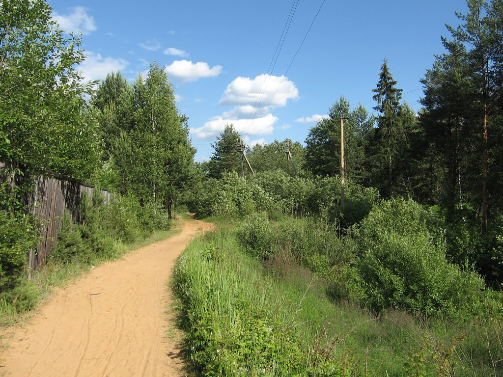 Forest trail to the old Kaduy., Кадуй