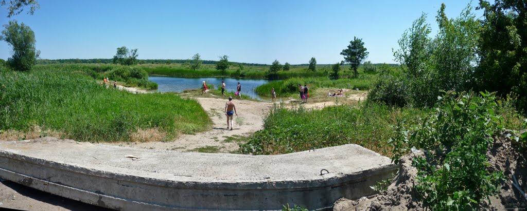 Заводской пляж, панорама, Бобров