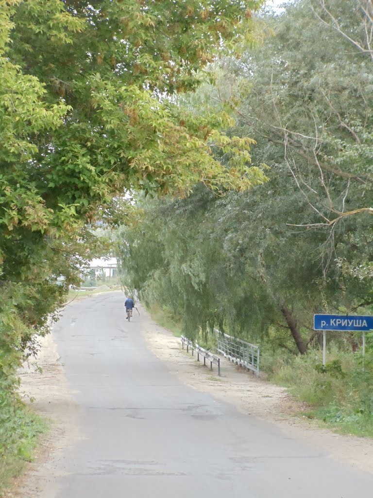 мост, Петропавловка