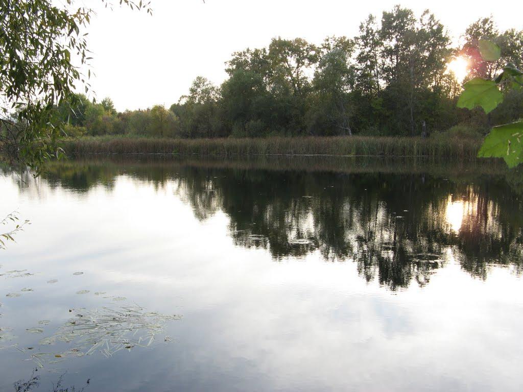 река Воронеж   . Voronezh river, Рамонь