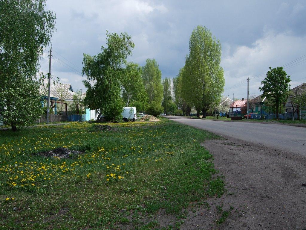 Май 2009, Таловая