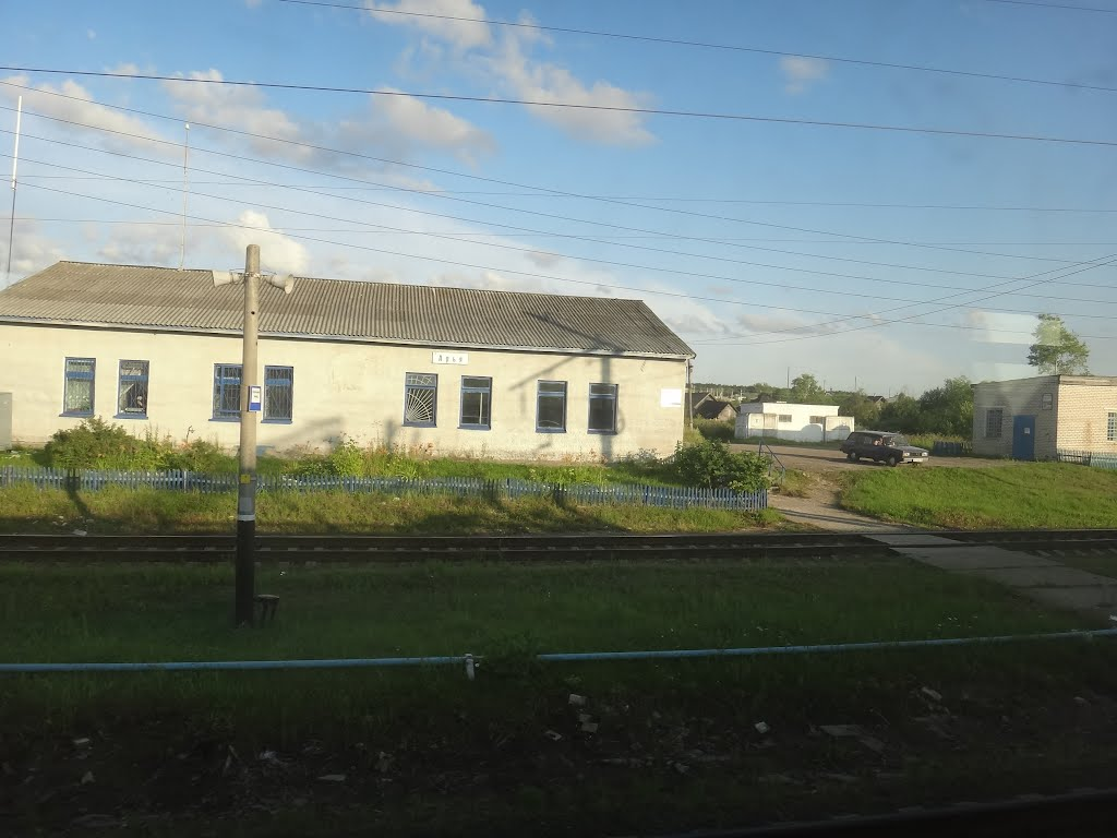 Станция Арья, Арья