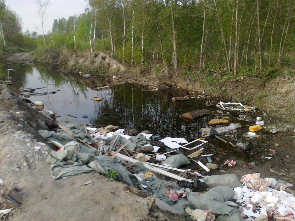 свалка и болото (07.05.2012), Горбатовка