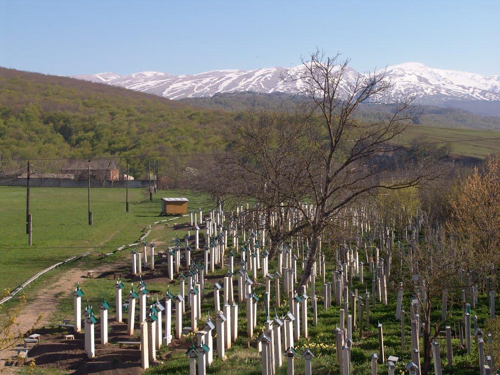 кладбище, Дылым