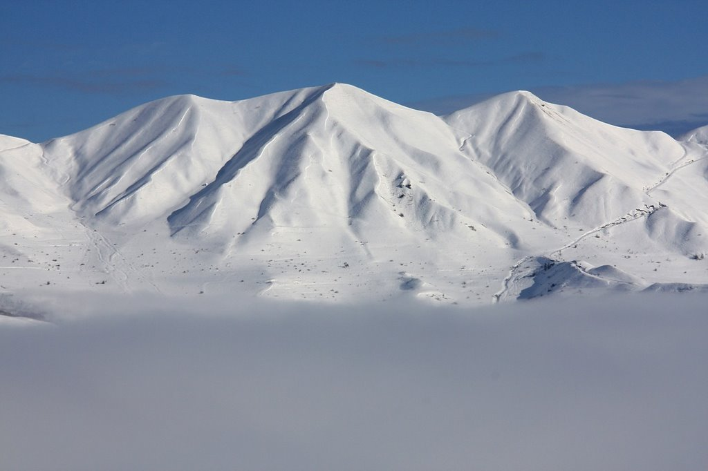 Beautiful Winter Day, Курах