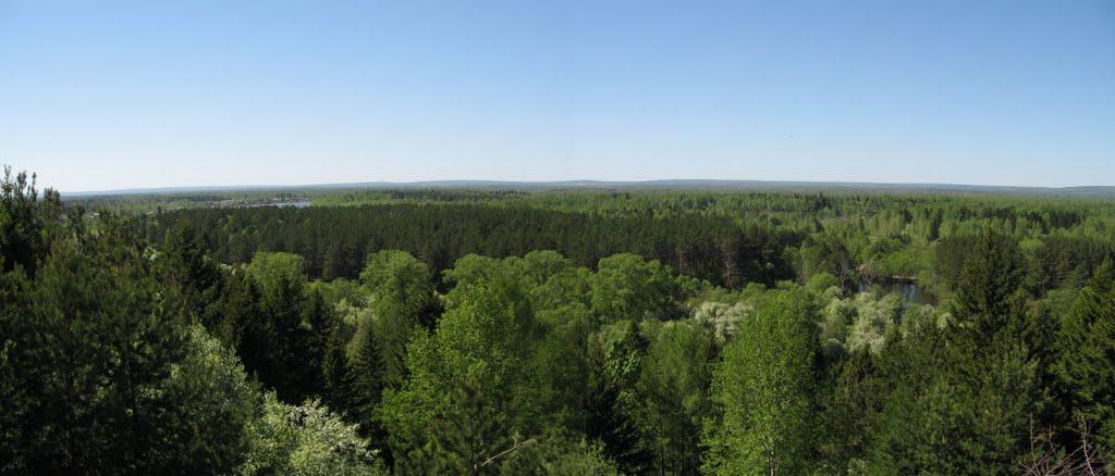 Панорама с ул. Набережная, Бирюсинск
