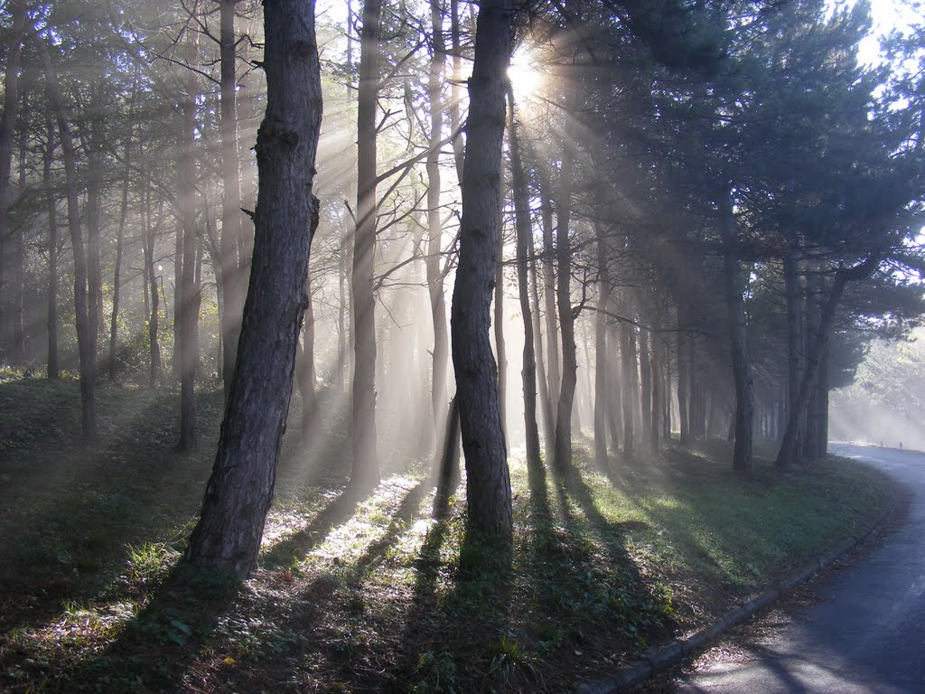 Солнце в тумане., Советское