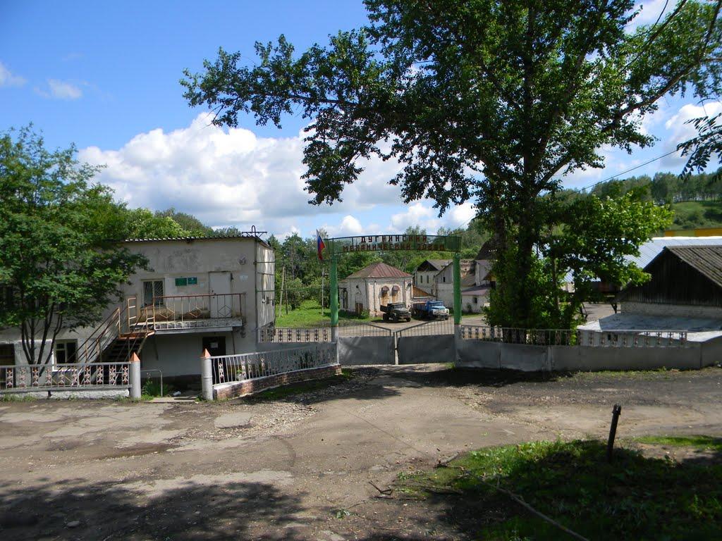 Дугнинский завод, Дугна