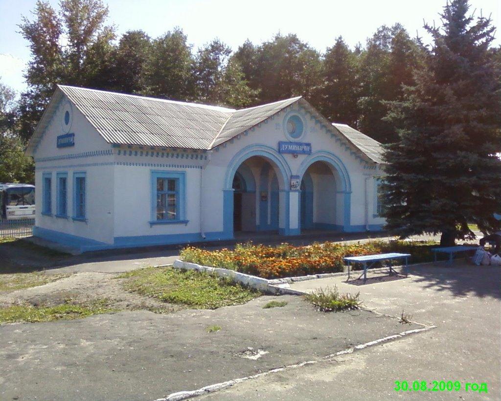 станция Думиничи by VANES, Думиничи