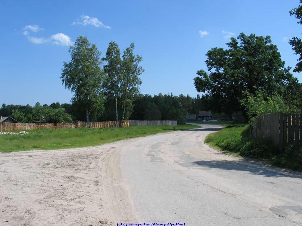 Перекрёсток на ул.Пушкина и дороги на Калинов мост (11.06.2009), Еленский