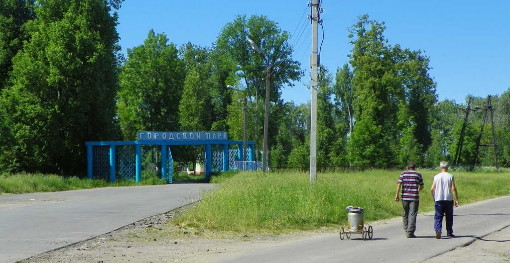 Сухиничи 2011, Сухиничи