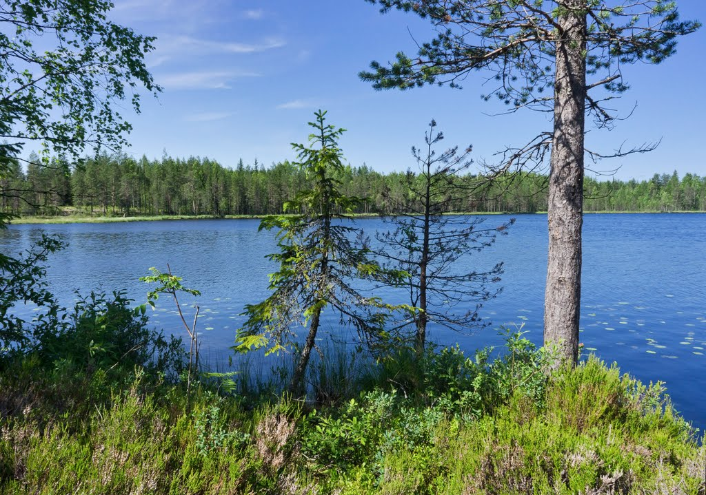 Озера Лычные, Деревянка