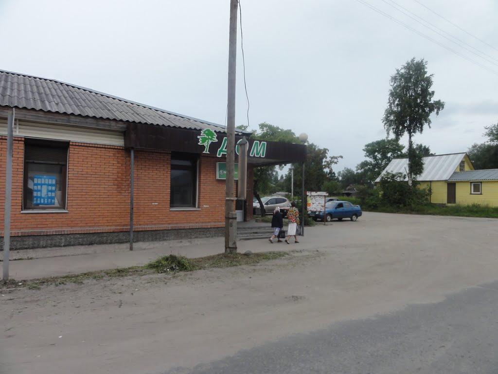 Пудожский район, Республика Карелия, Россия, Пудож