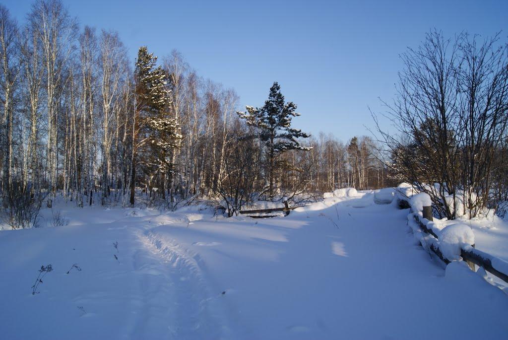 зима в деревени (утро), Тисуль