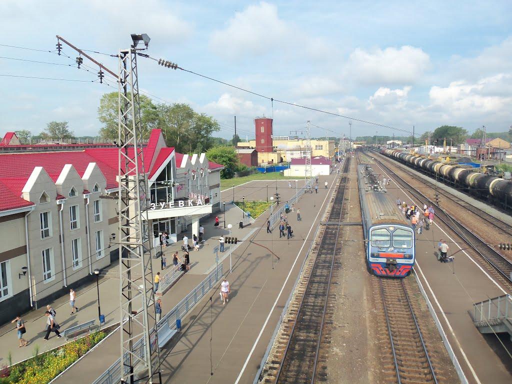 Станция Зуевка, Зуевка
