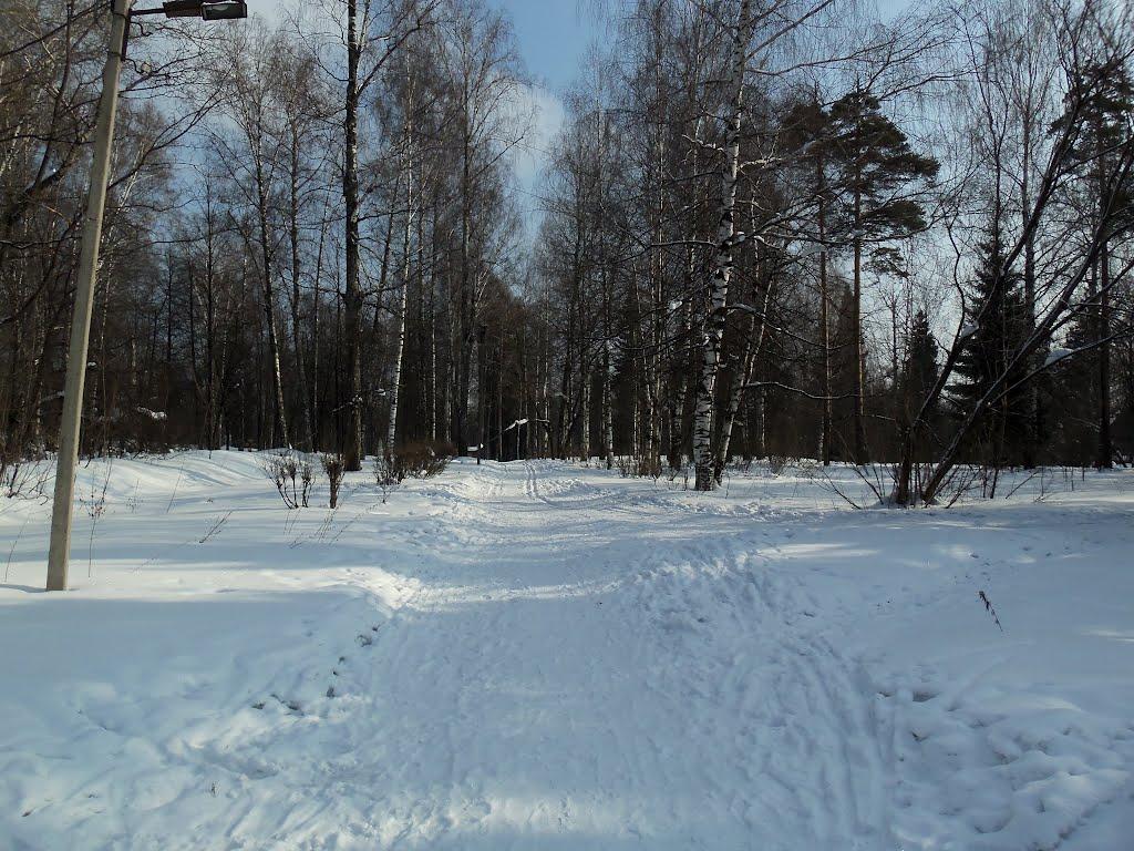 Главная аллея парка, март, Слободской