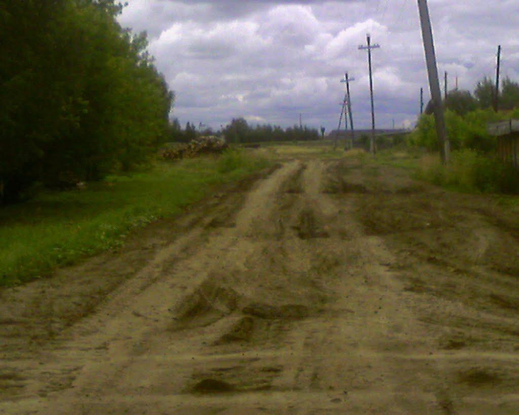Улица Северная в сторону Колхоза, Фаленки