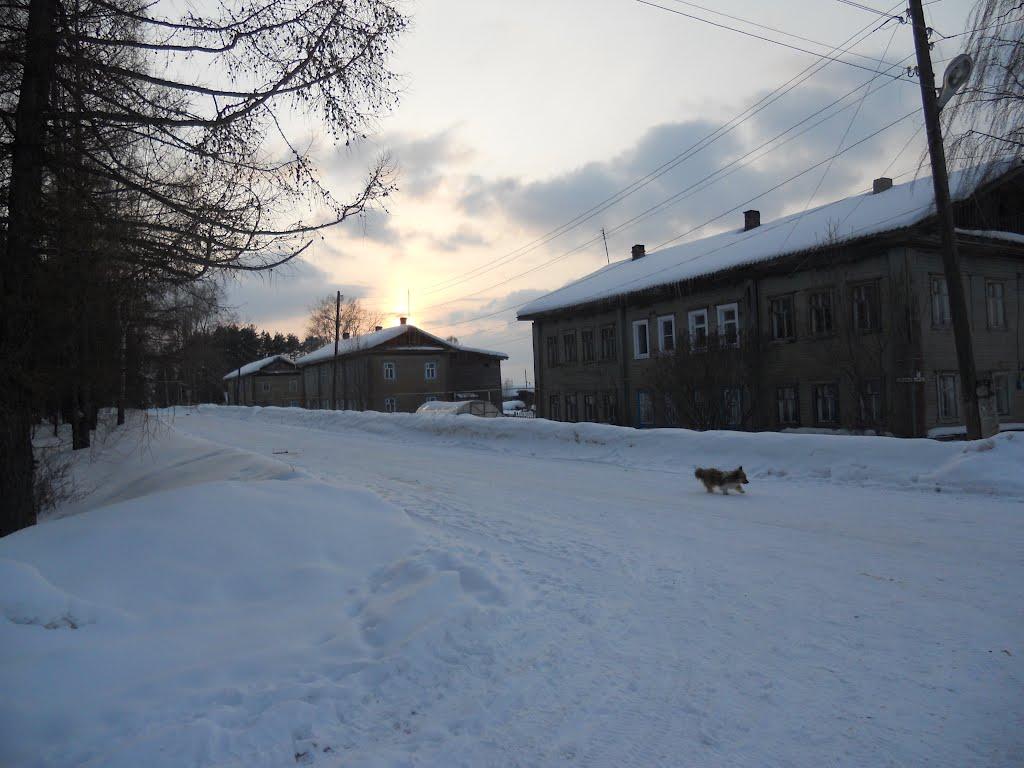Улица Первомайская, Фаленки