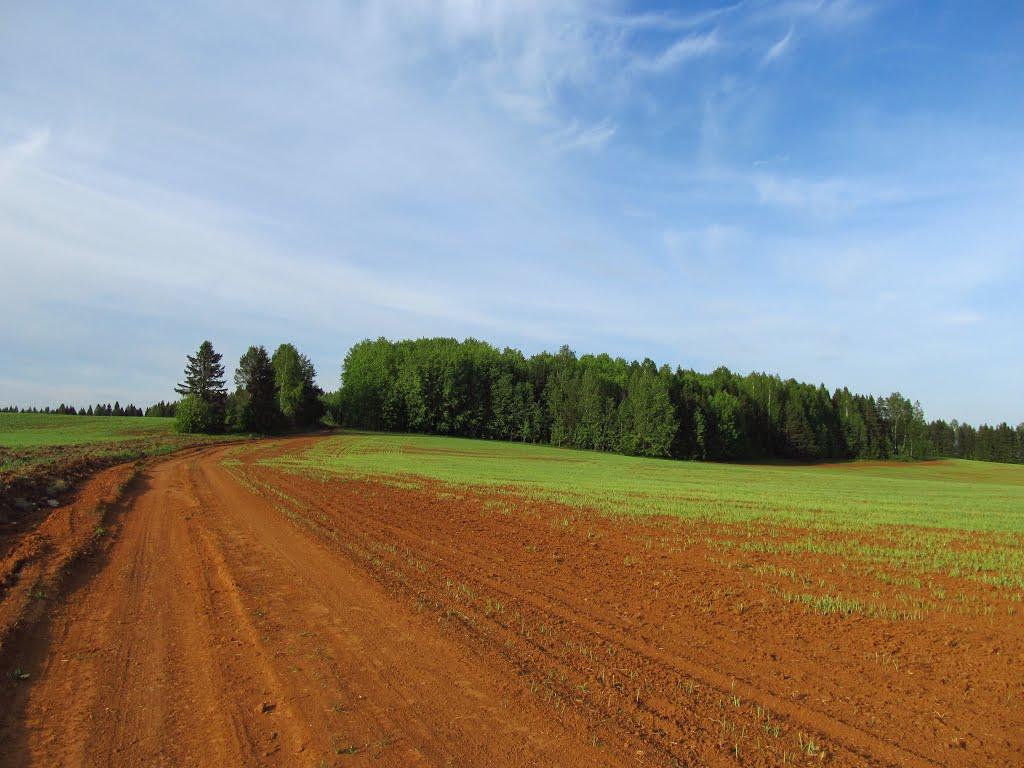 Дорога на холм, Халтурин
