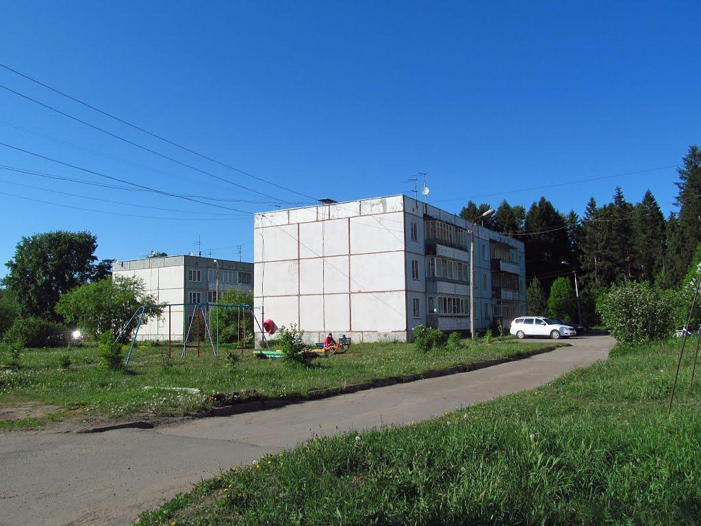Панельные дома в Митино, Халтурин
