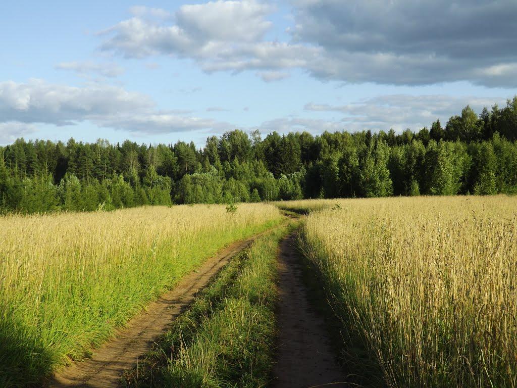Дорога к Слободской трассе, Халтурин