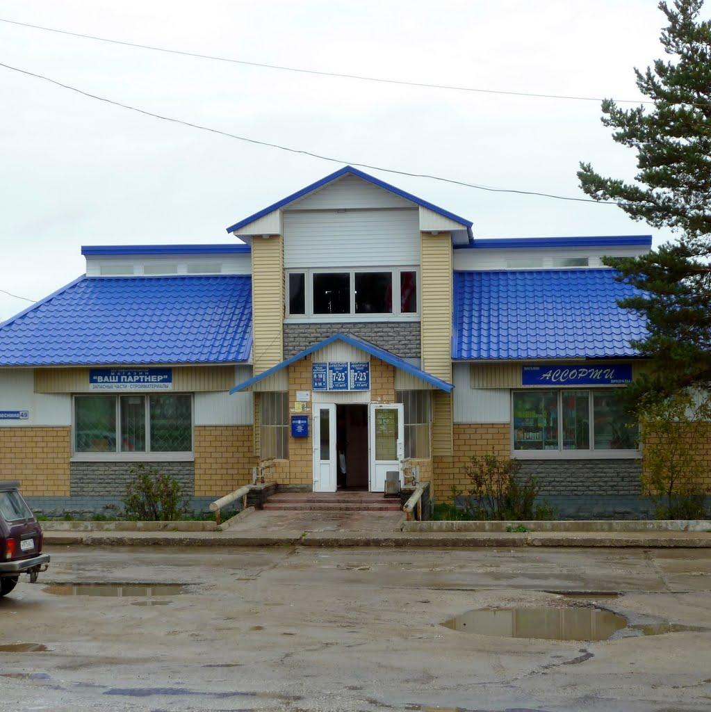 Визинга,магазин, Сысольский район, Республика Коми, Визинга