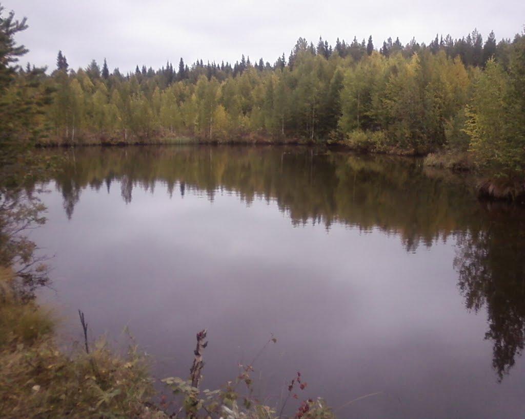 озеро, Водный