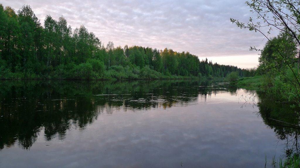 Белые ночи на реке Весляна :: The white nights on the river Vesljana, Вожаель