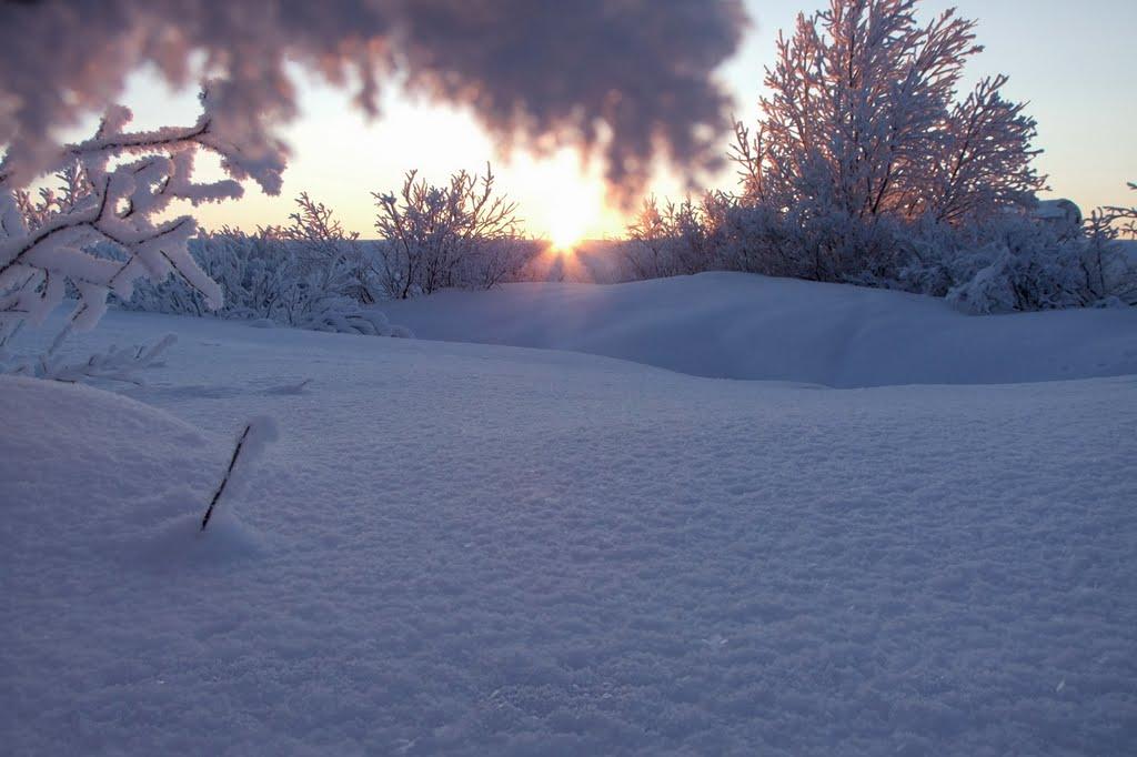 Первое солнце после полярной ночи, Воркута