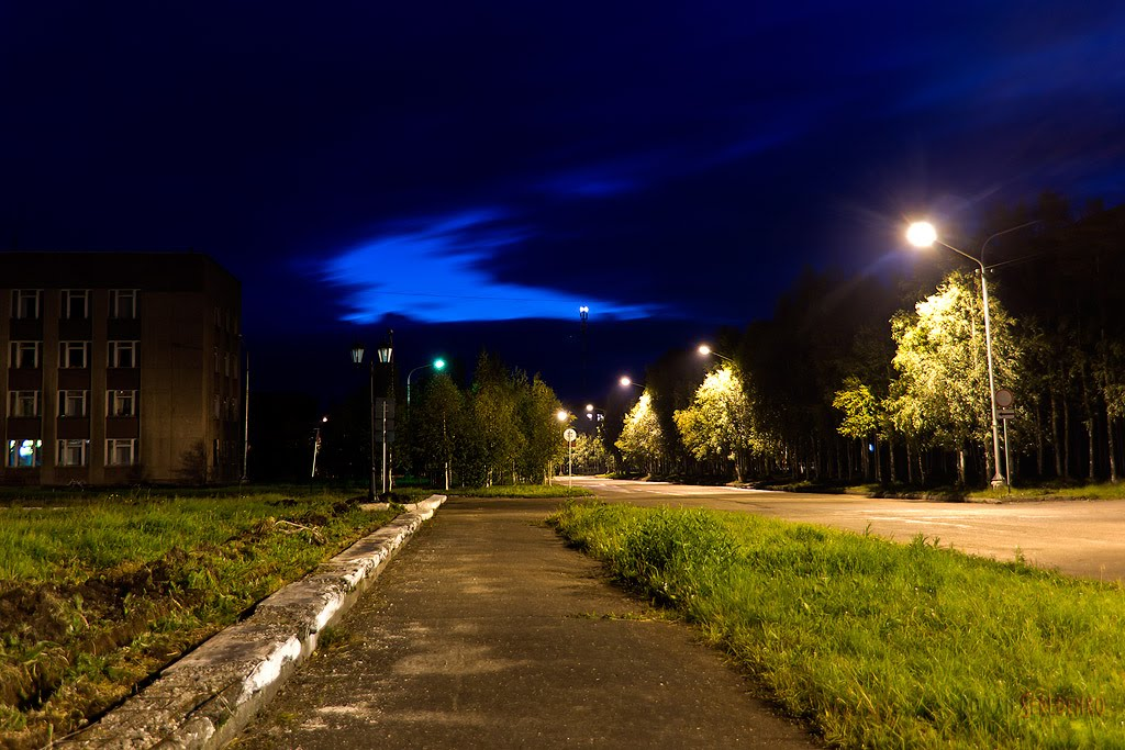 Night road, Инта
