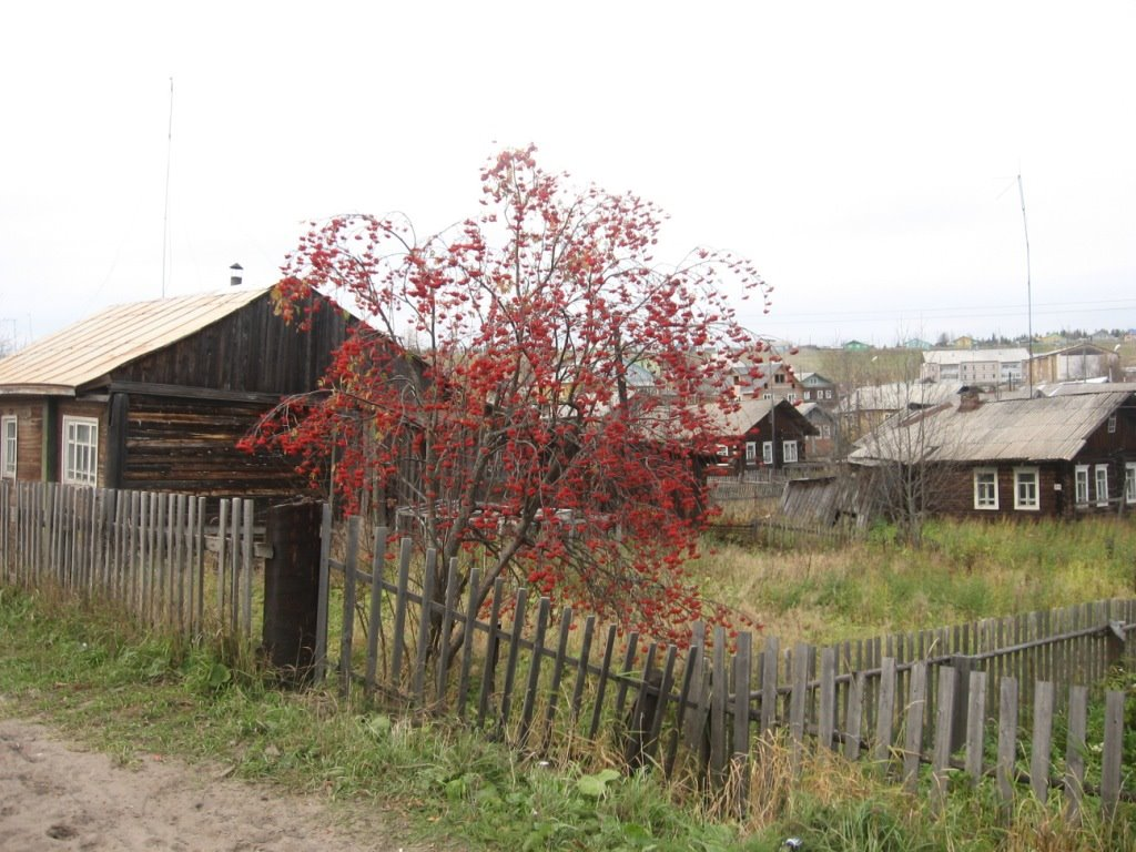 Урожай, Кослан
