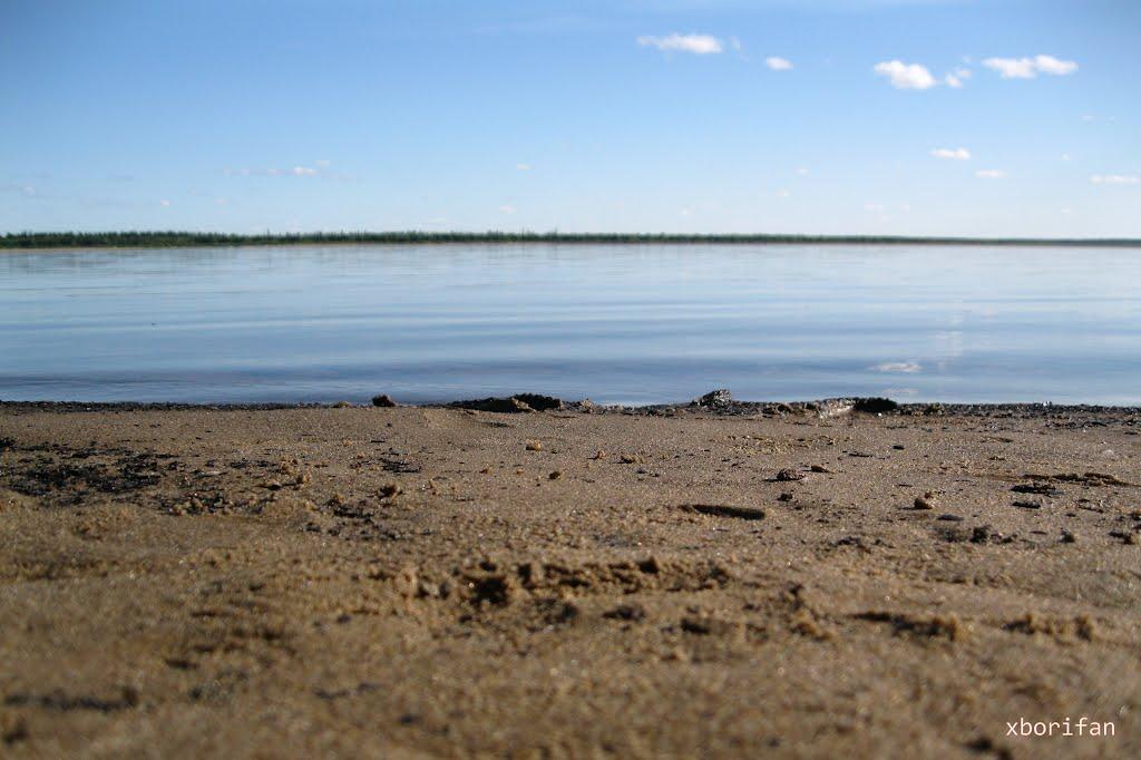 На бережку реки Печоры, Печора