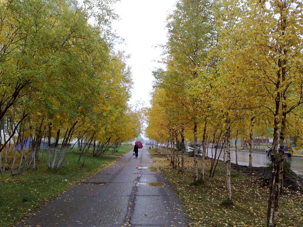 Осень, Усинск