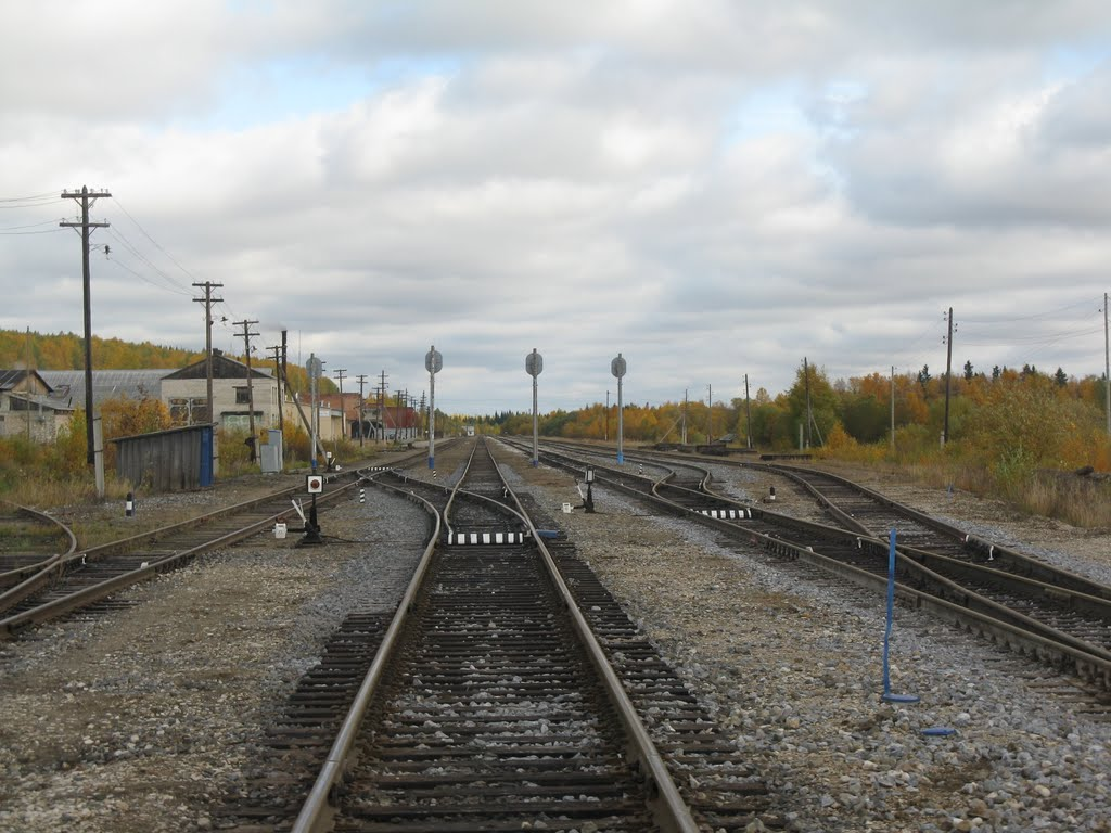 Станция Кослан, Усогорск
