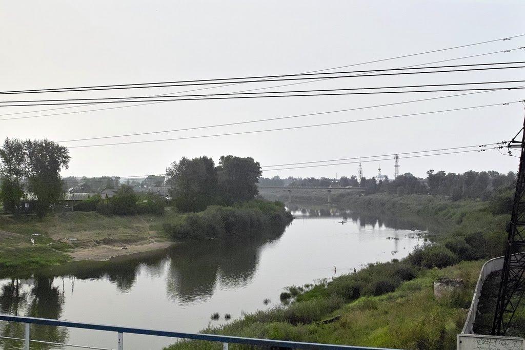 река Кострома, Буй
