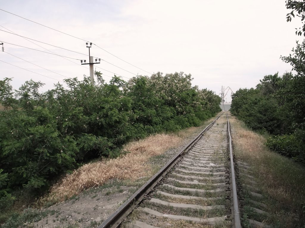 Поодъездной путь куда-то / The access road, Ейск