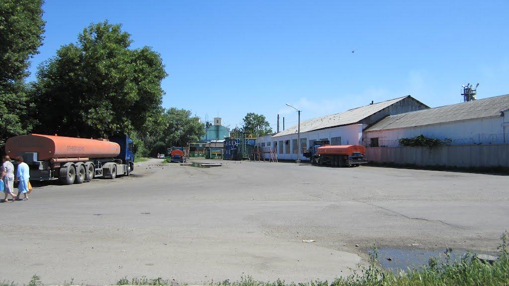 Концерный завод, Лабинск
