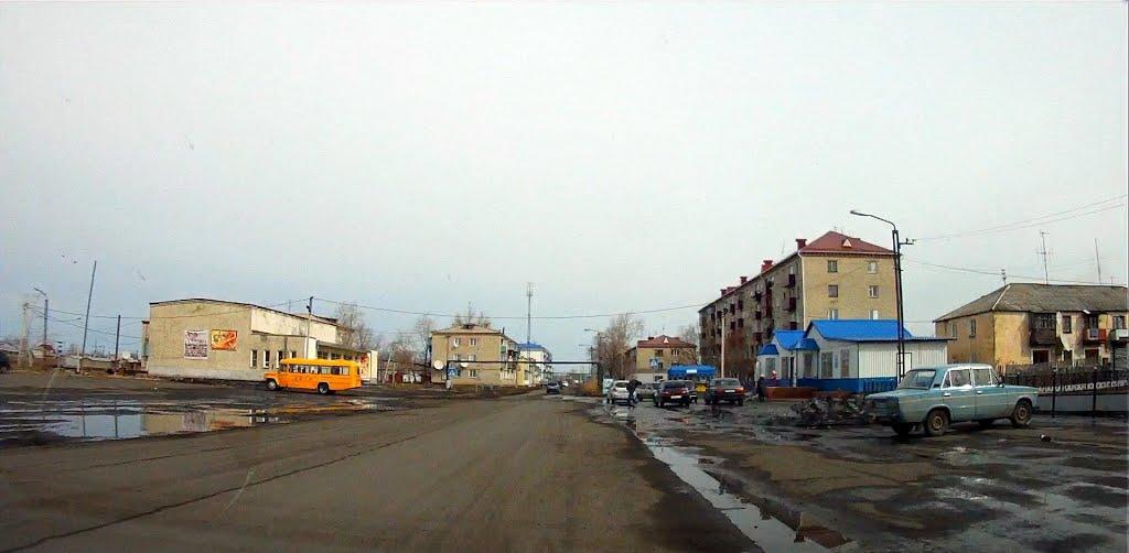 улица Пушкина, Лебяжье