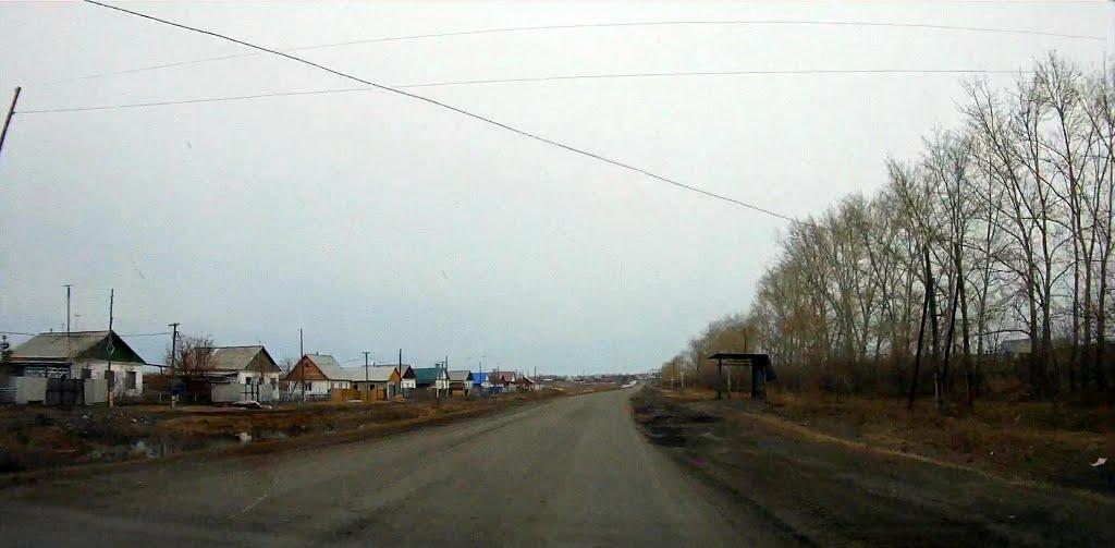 улица Сибирская, Лебяжье