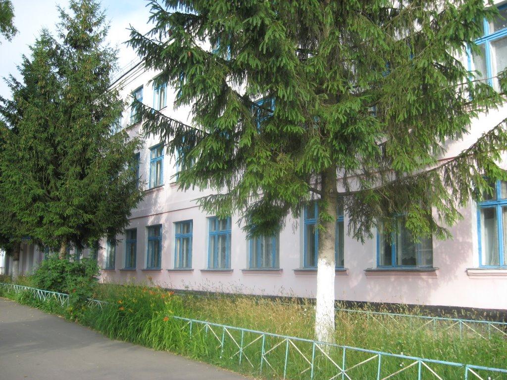 Больше-Солдатская средняя школа, июнь 2009г,Г.А. Тарасюк., Большое Солдатское
