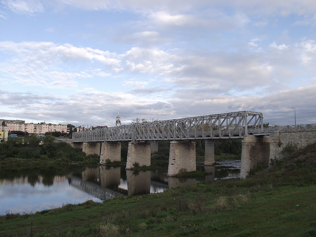 Старый мост через реку  Быстрая Сосна, Елец