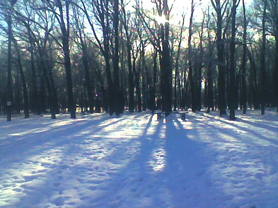 Парк Зимой, Рузаевка