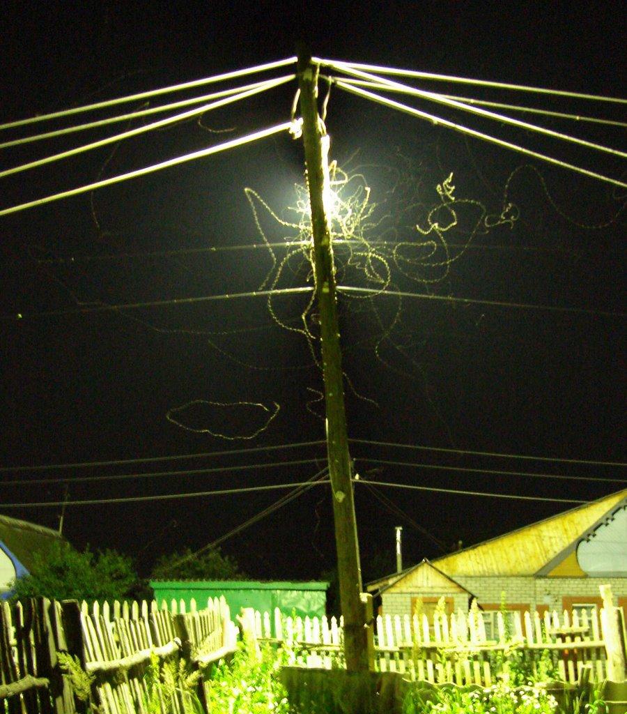 Ночные бабочки на Комсомольской, Рузаевка