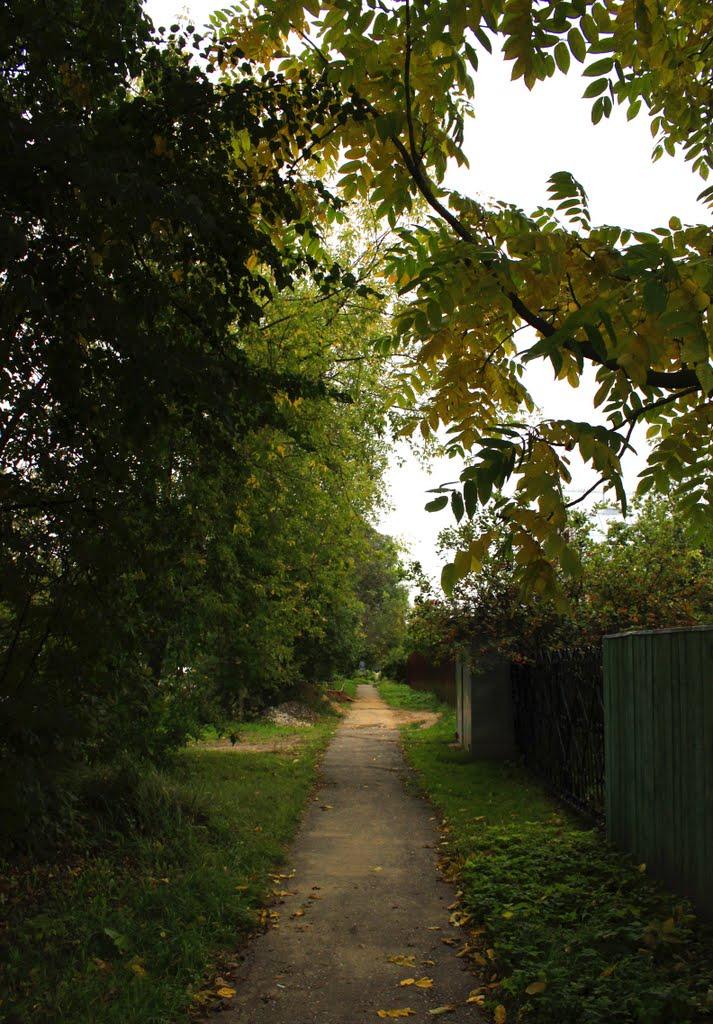 Pathway, Клин