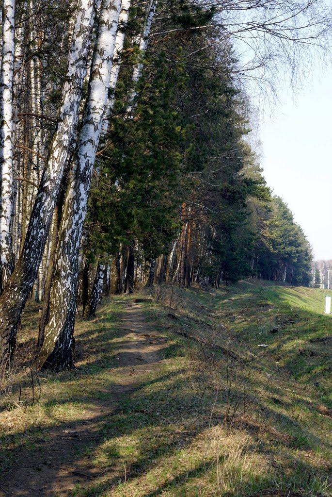 Перегон Лесной Городок - Толстопальцево, Лесной Городок